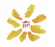 Logo-Rgionalparks-1024×164